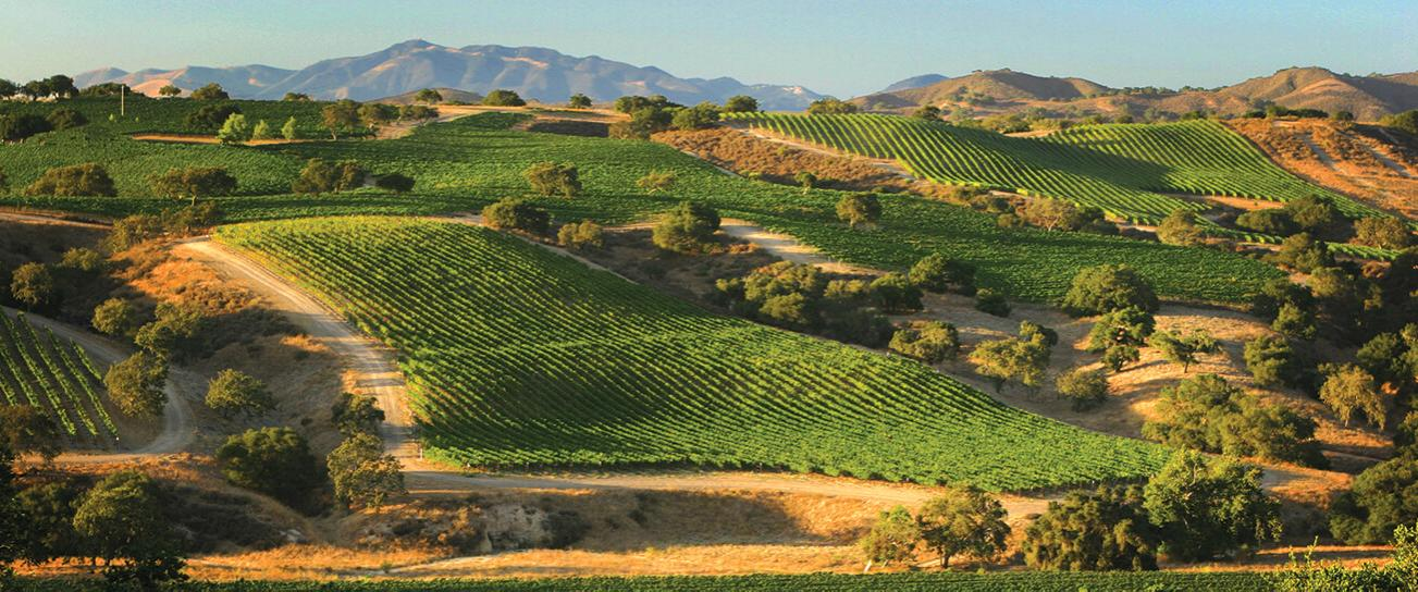 Santa Barbara, CA wine country.